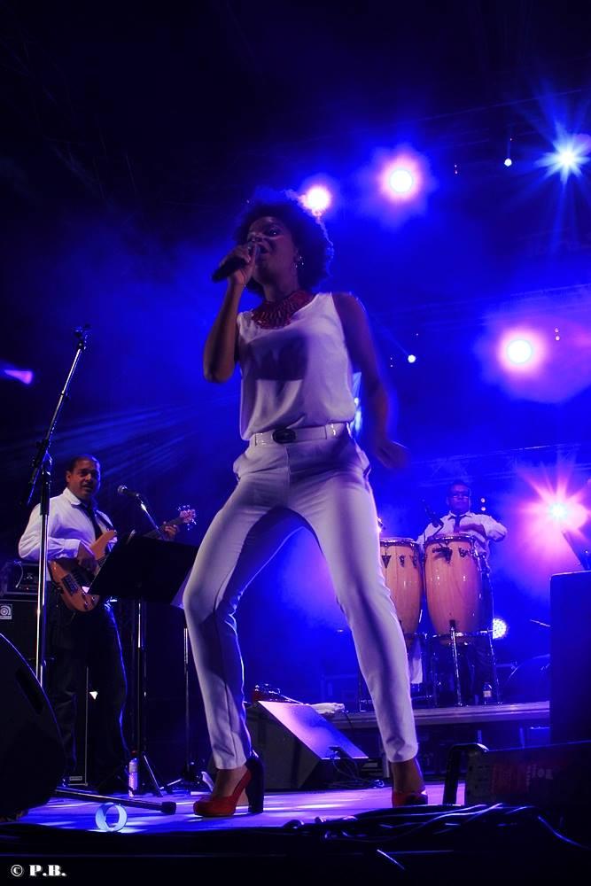 Festival Toros y Salsa Dax 2014